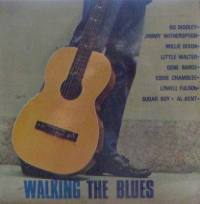 Various Artists - Walking The Blues [with Bo Diddley, Willie Dixon, Little Walter, Sugar Boy 1964]
